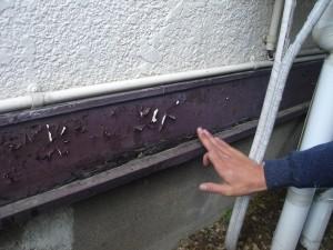外壁木部の傷み